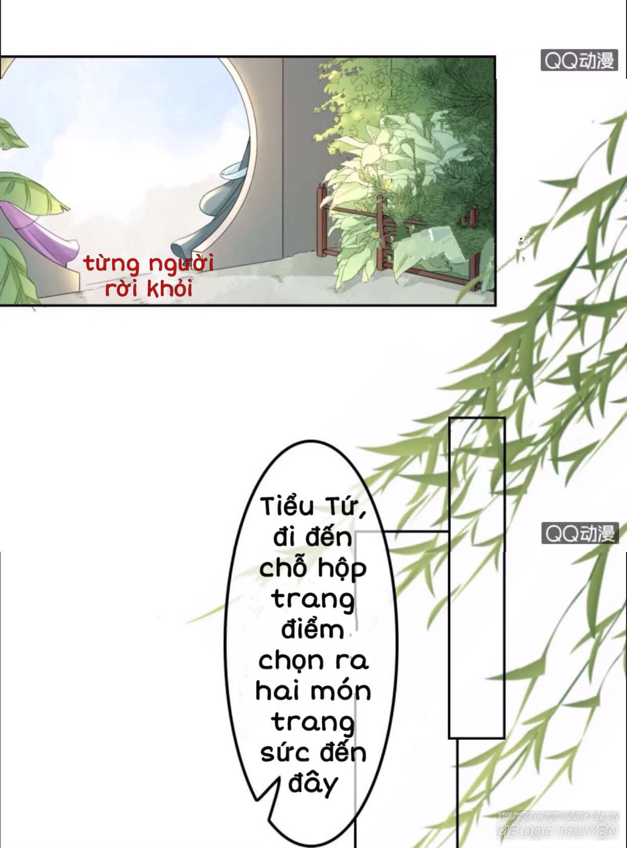 Sủng Phi Của Vương